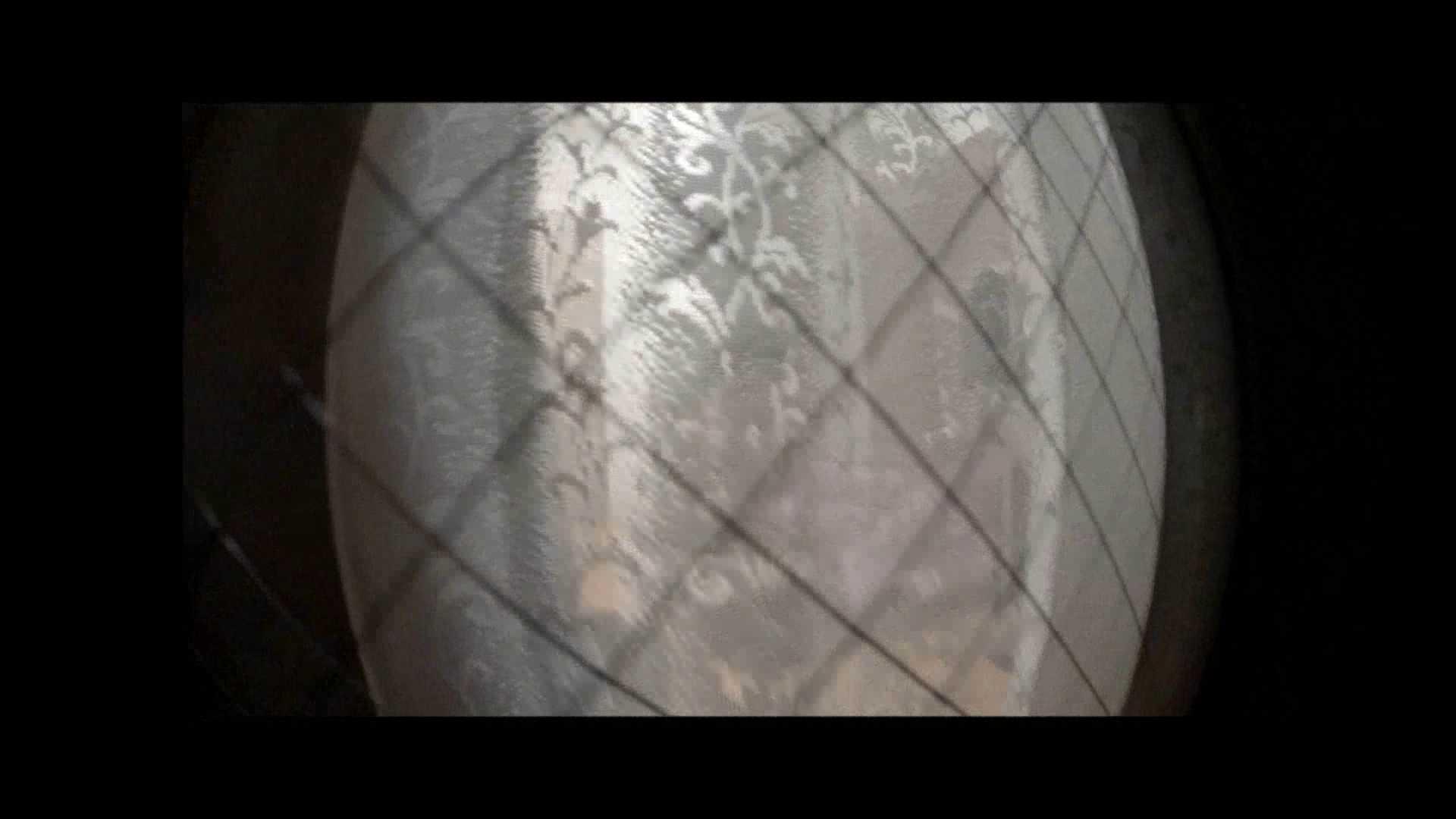 【04】別の日・・・魚眼レンズで広角に撮れました。 家宅侵入   0  108pic 33