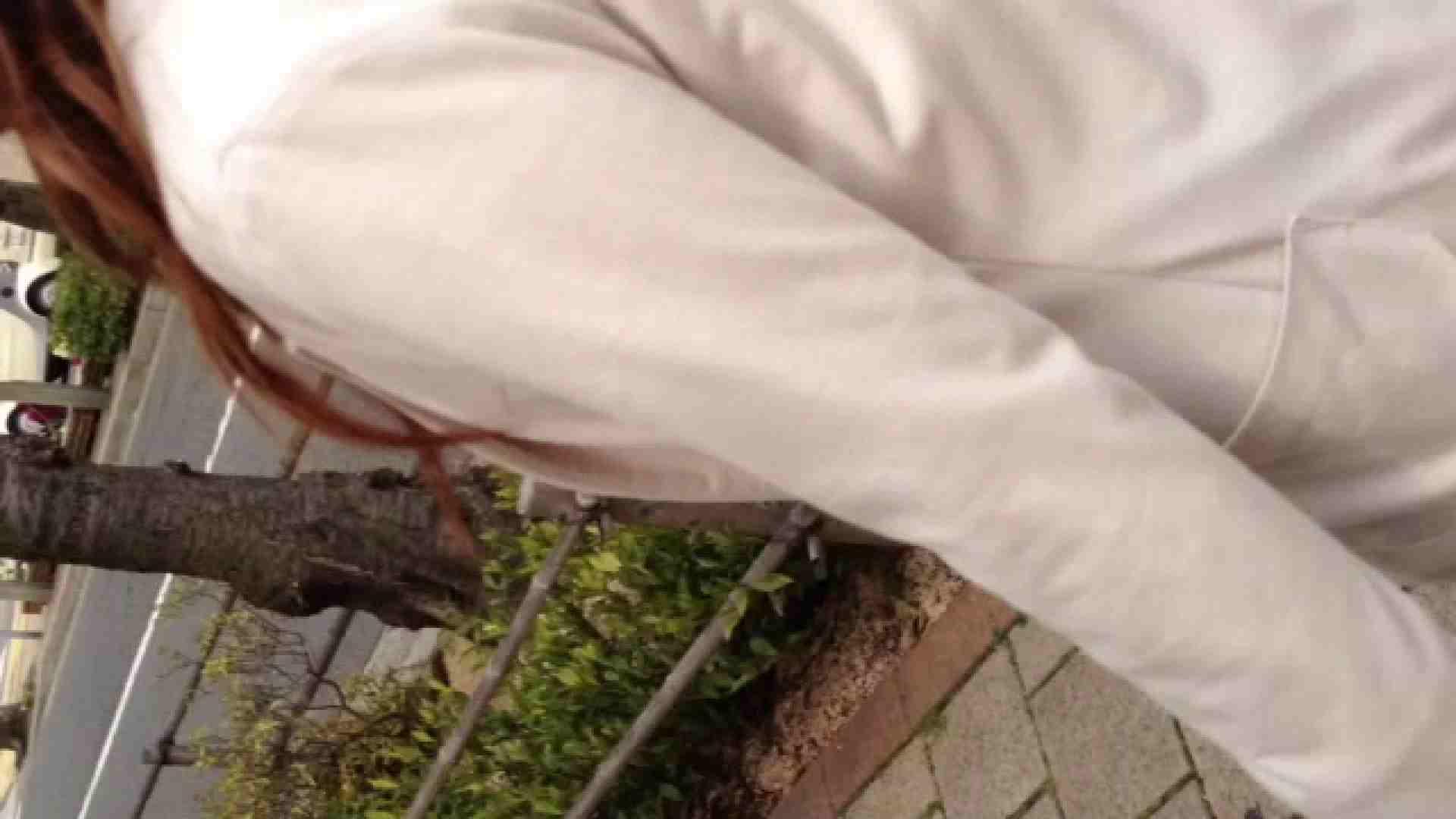 23(19日目)桜を見ながらお散歩 一般投稿  82pic 44