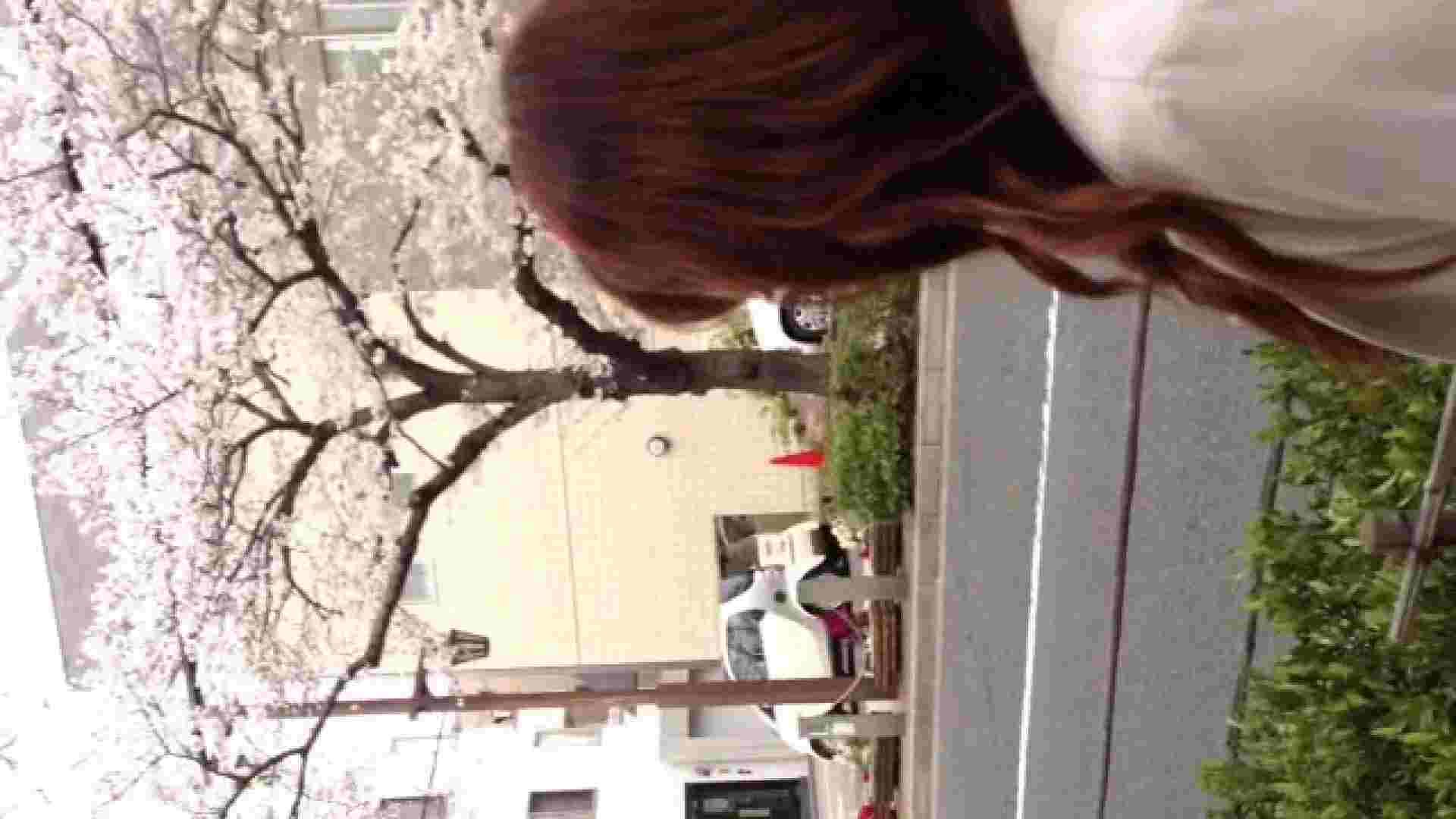 23(19日目)桜を見ながらお散歩 一般投稿  82pic 46