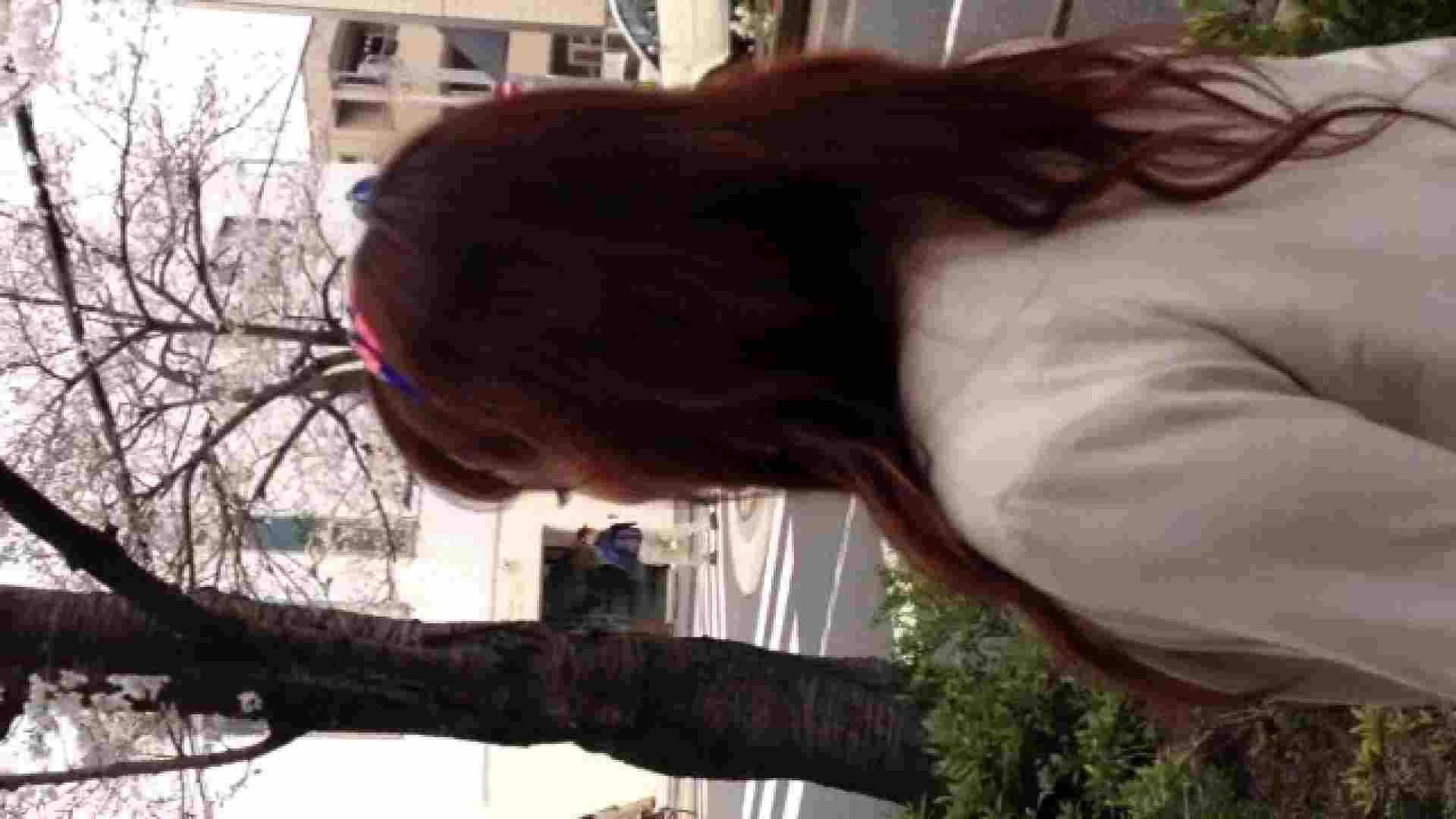 23(19日目)桜を見ながらお散歩 一般投稿  82pic 48