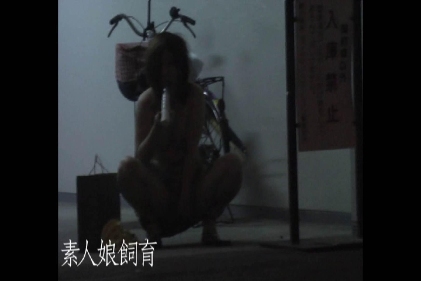 素人嬢飼育~お前の餌は他人棒~8月1日露出撮影貸出 一般投稿  109pic 64