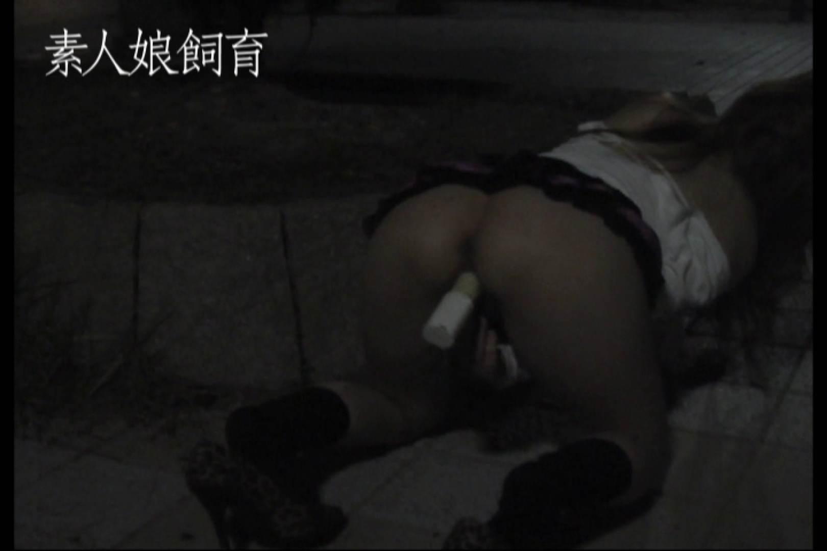 素人娘飼育~お前の餌は他人棒~公園でバイブとお漏らし 一般投稿 盗み撮り動画 77pic 7