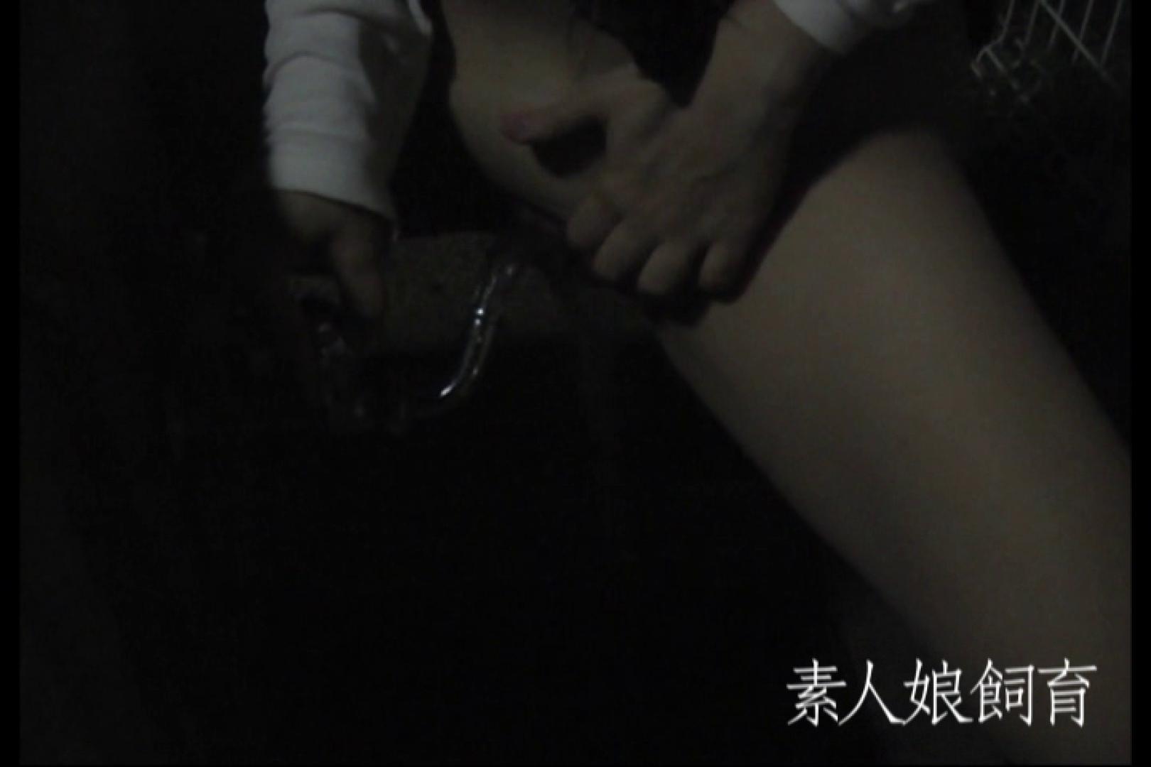 素人娘飼育~お前の餌は他人棒~公園でバイブとお漏らし 一般投稿 盗み撮り動画 77pic 57