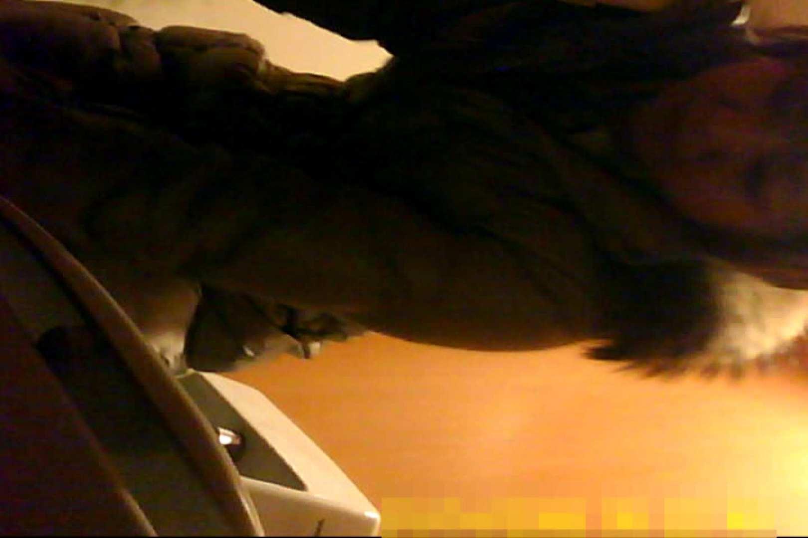 魅惑の化粧室~禁断のプライベート空間~12 盗撮 ぱこり動画紹介 97pic 34