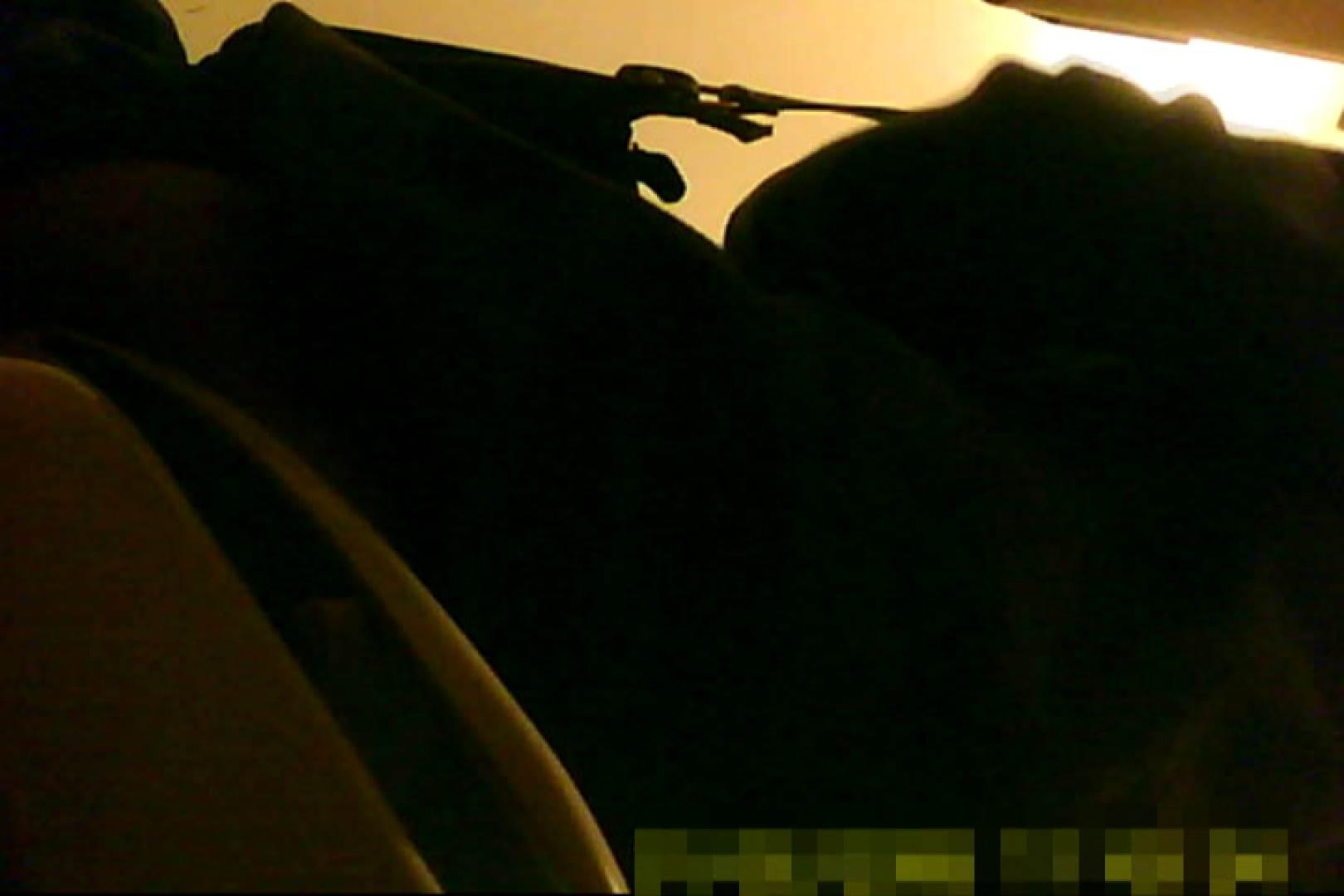 魅惑の化粧室~禁断のプライベート空間~12 プライベート映像 AV動画キャプチャ 97pic 91