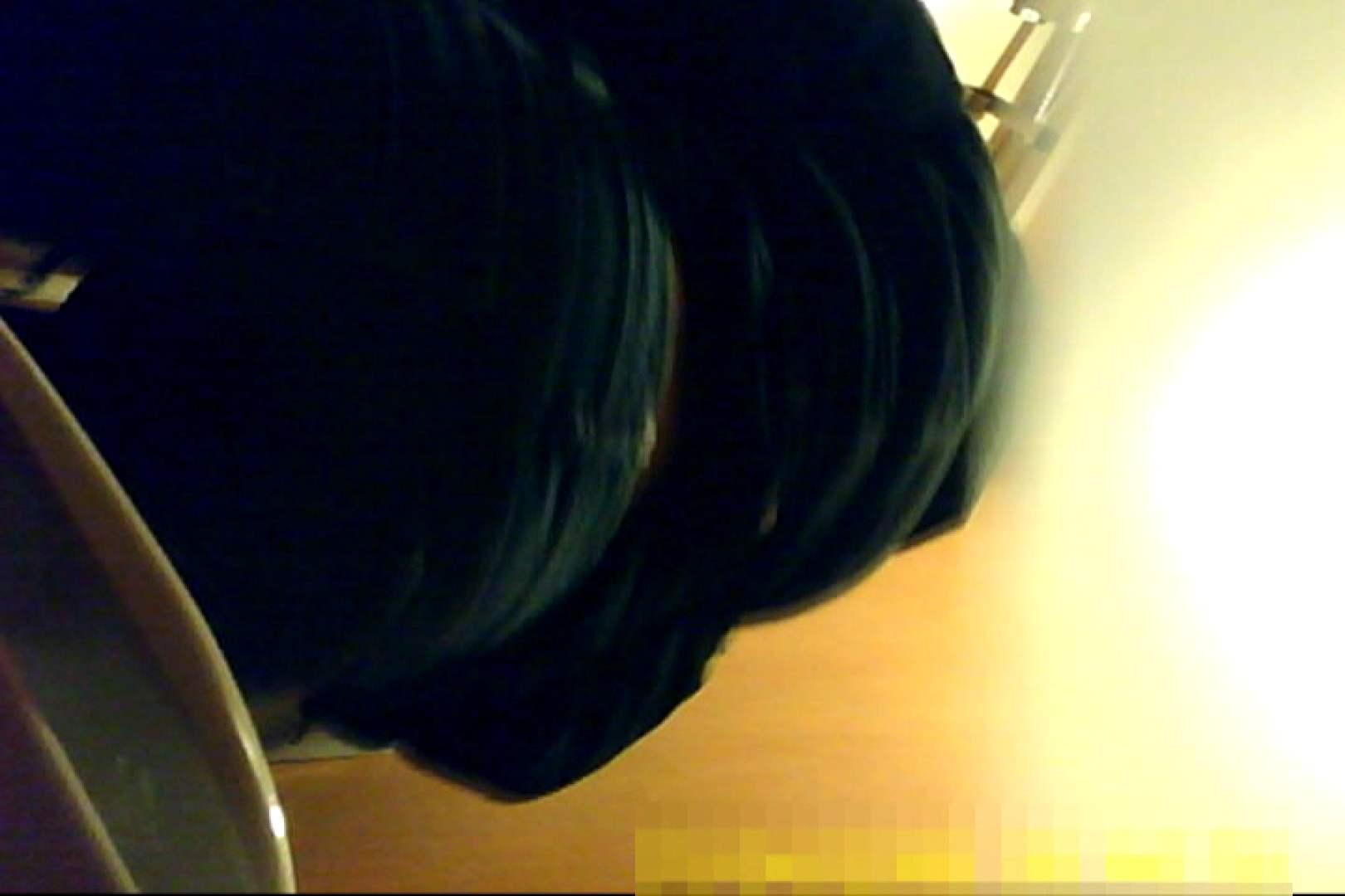 魅惑の化粧室~禁断のプライベート空間~17 洗面所  61pic 57