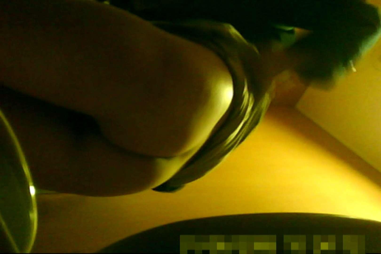 魅惑の化粧室~禁断のプライベート空間~25 プライベート映像  89pic 44