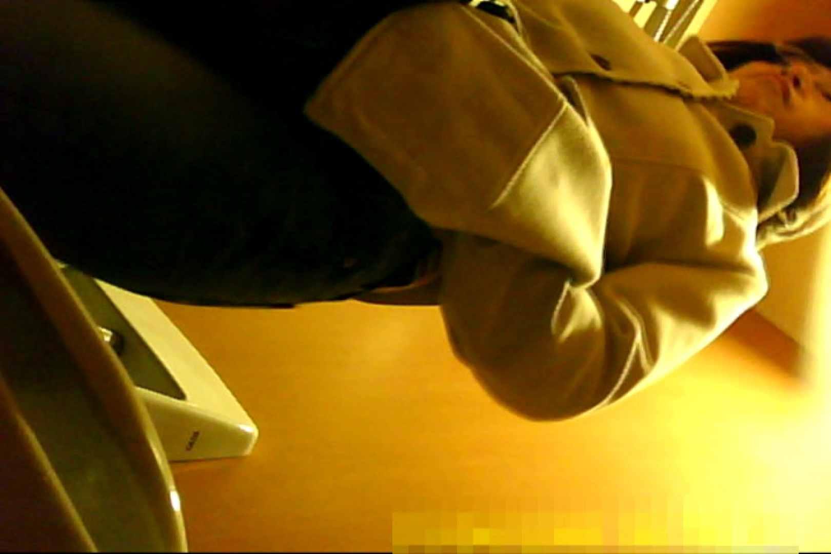 魅惑の化粧室~禁断のプライベート空間~30 プライベート映像   洗面所  108pic 34
