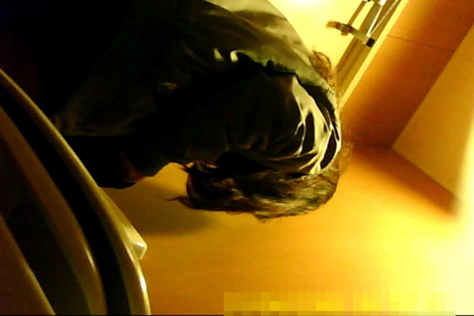魅惑の化粧室~禁断のプライベート空間~30 プライベート映像   洗面所  108pic 46
