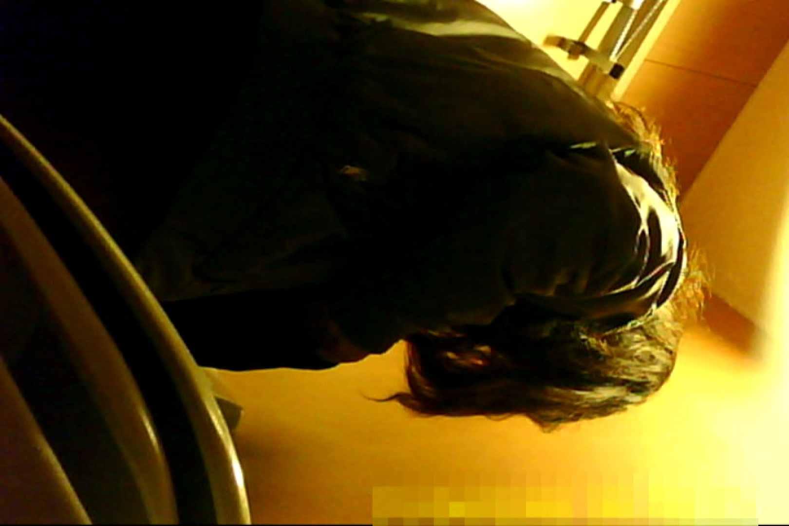 魅惑の化粧室~禁断のプライベート空間~30 プライベート映像   洗面所  108pic 52