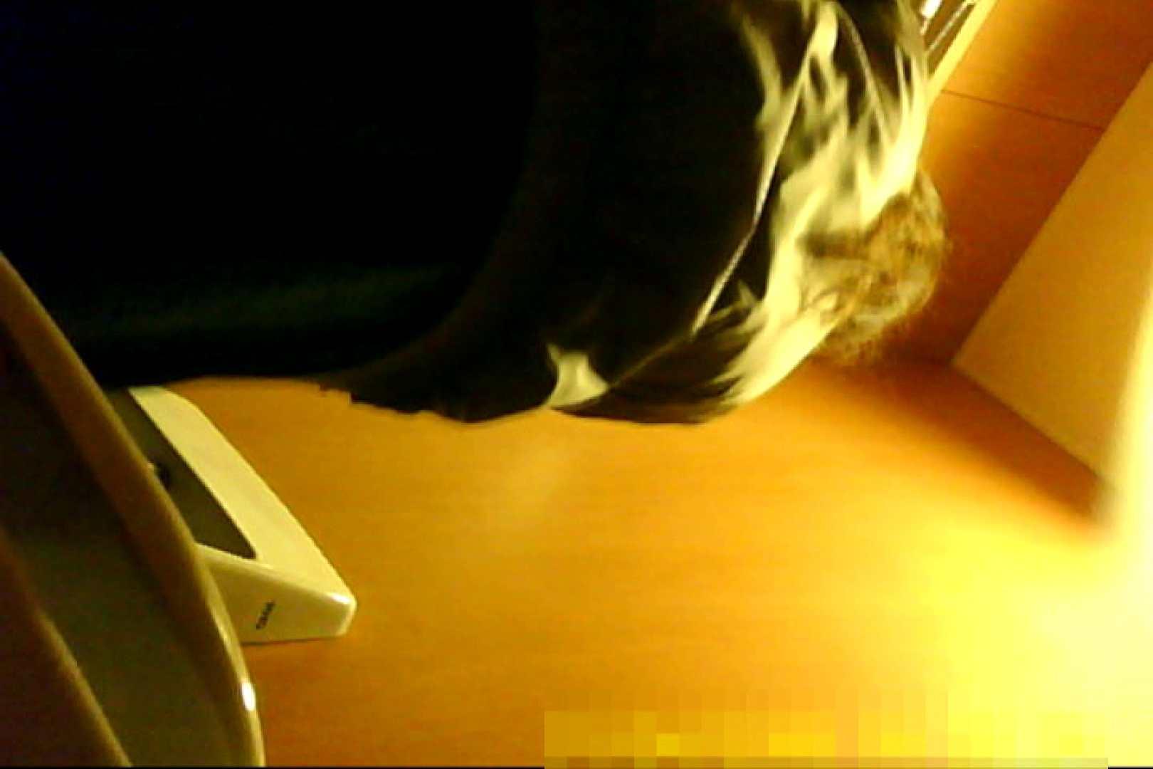 魅惑の化粧室~禁断のプライベート空間~30 プライベート映像  108pic 72