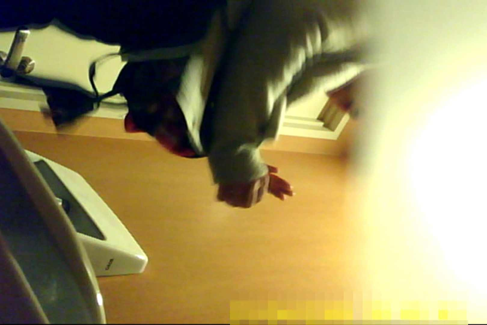 魅惑の化粧室~禁断のプライベート空間~31 盗撮 セックス画像 64pic 44